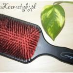Szczotka do włosów z włosia dzika z nylonowymi igiełkami Gorgol