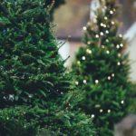 Poczujmy świąteczny nastrój!
